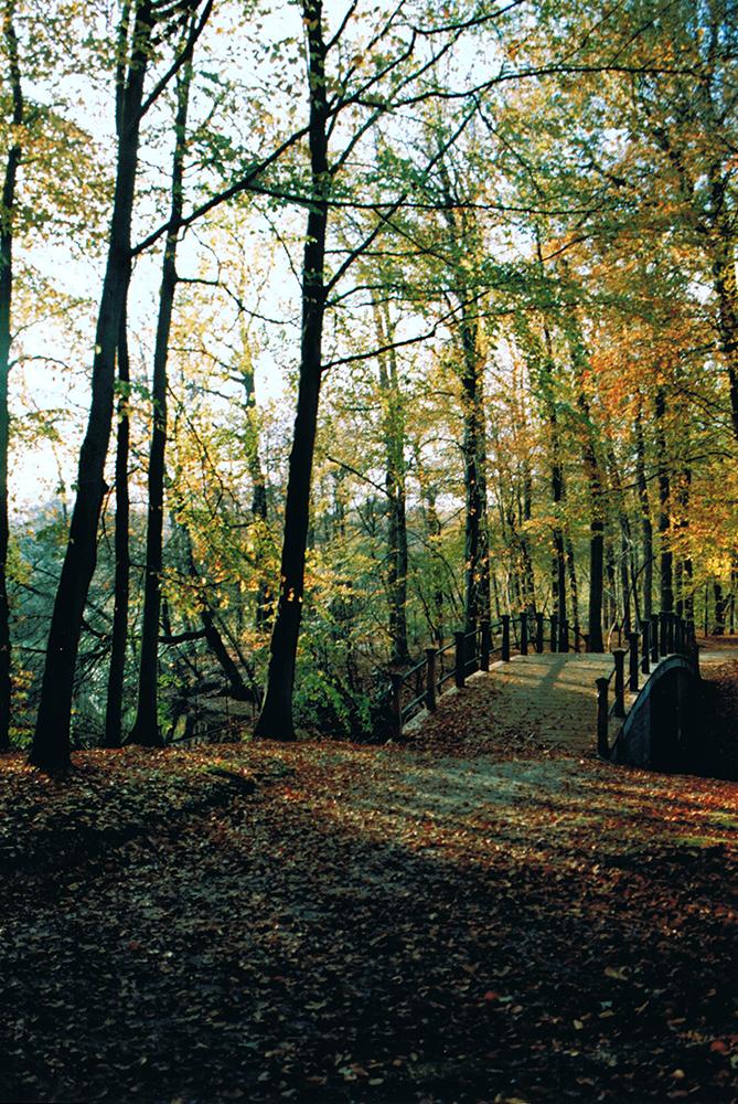 Autumn at Soestdijk Palace