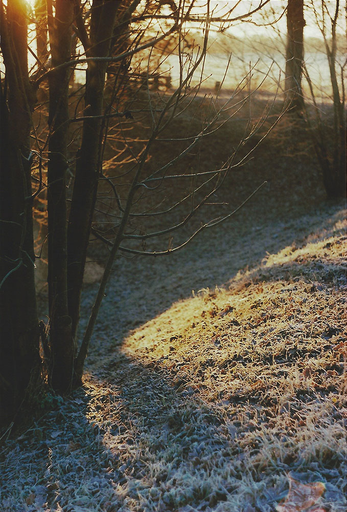 Winter Morning | another reverie
